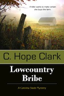 Book Cover - LowCountry Bribe